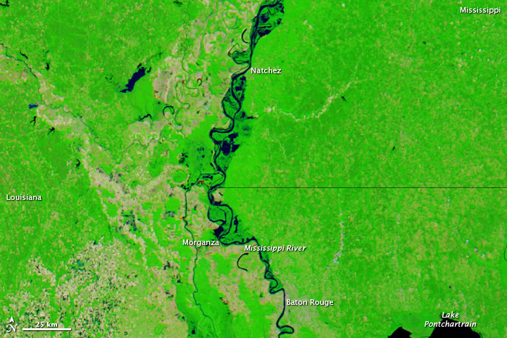 Rising Waters on the Lower Mississippi