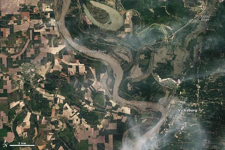 Mississippi Floods near Vicksburg
