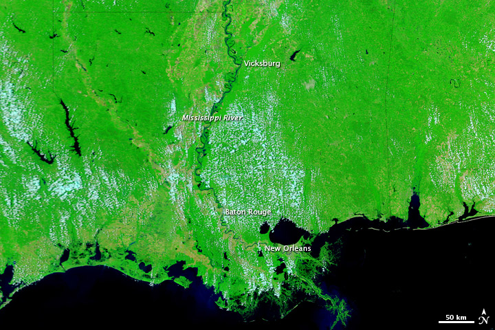 Lower Mississippi River Remains Swollen
