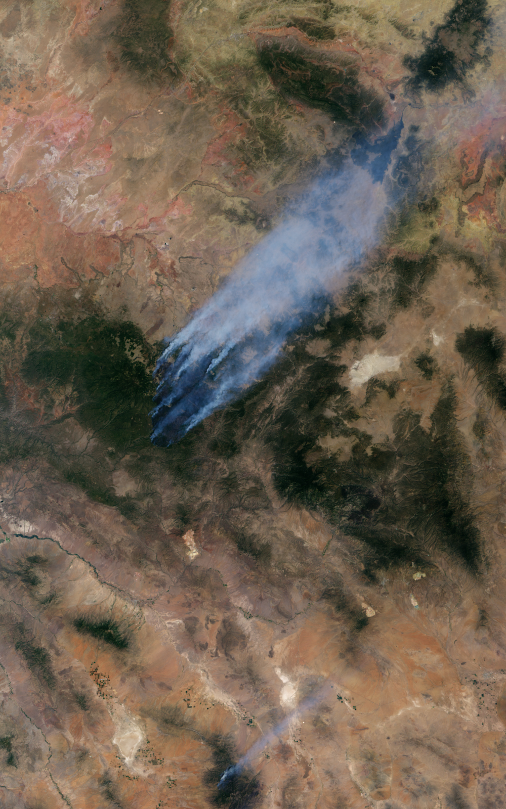 Wallow Fire, Arizona - related image preview