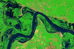Lingering Floodwaters near Vicksburg, Mississippi