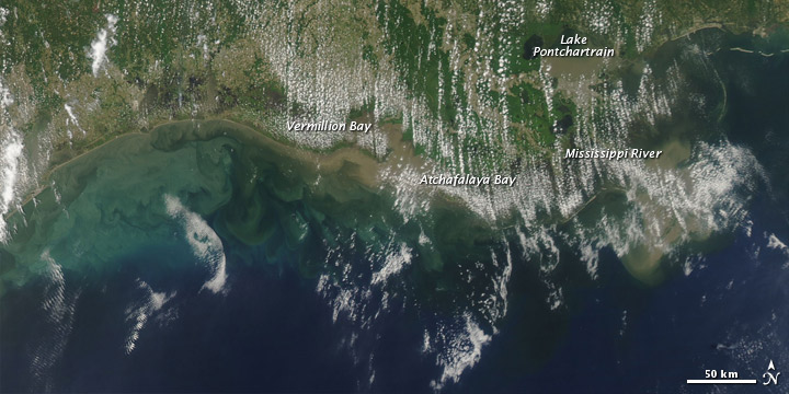 Sediment in the Gulf of Mexico