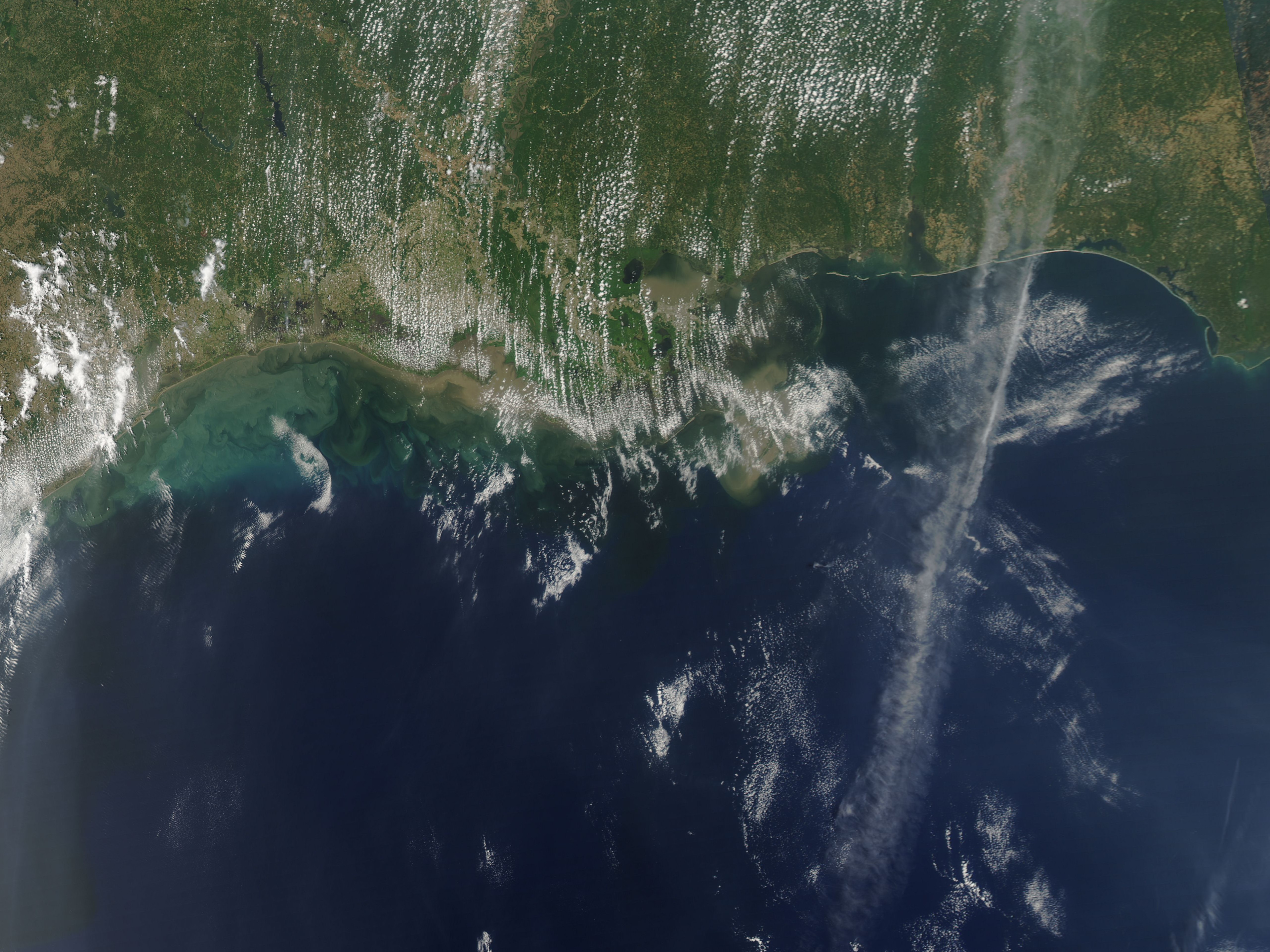 Sediment in the Gulf of Mexico - related image preview