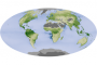 A Global Garden: Plants Storing Carbon