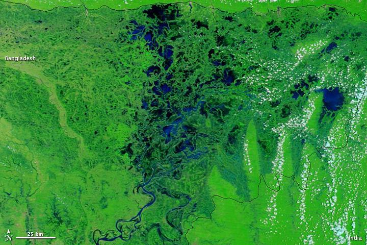 Summer Monsoon Transforms Northeastern Bangladesh