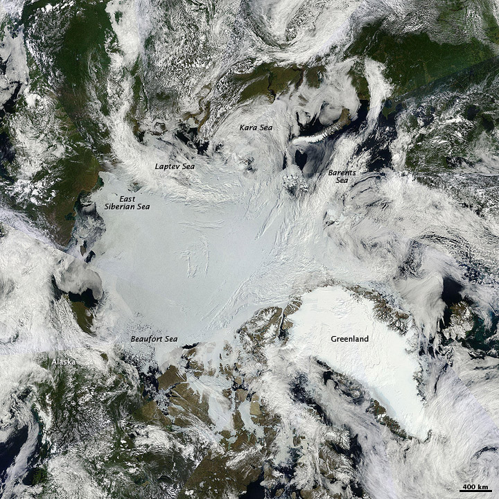 Sunny Skies over Arctic Sea Ice
