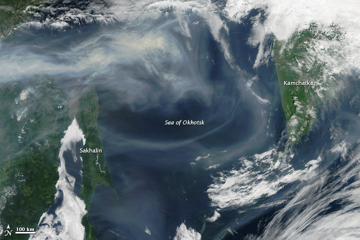 Wildfire Smoke over the Sea of Okhotsk