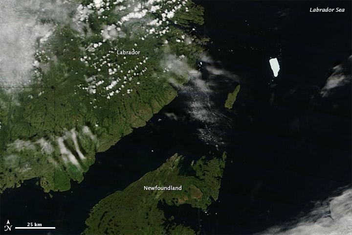 Ice Island Drifts Southward