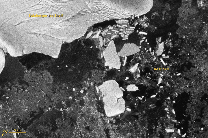 Antarctic Icebergs Chipped off by Japan Tsunami - related image preview