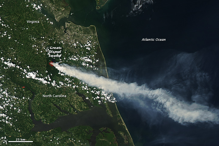 Fire in Great Dismal Swamp, Virginia