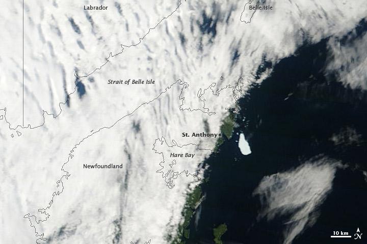 Petermann Ice Island-A Off Newfoundland