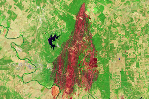 Bastrop County Complex Fire Burn Scar