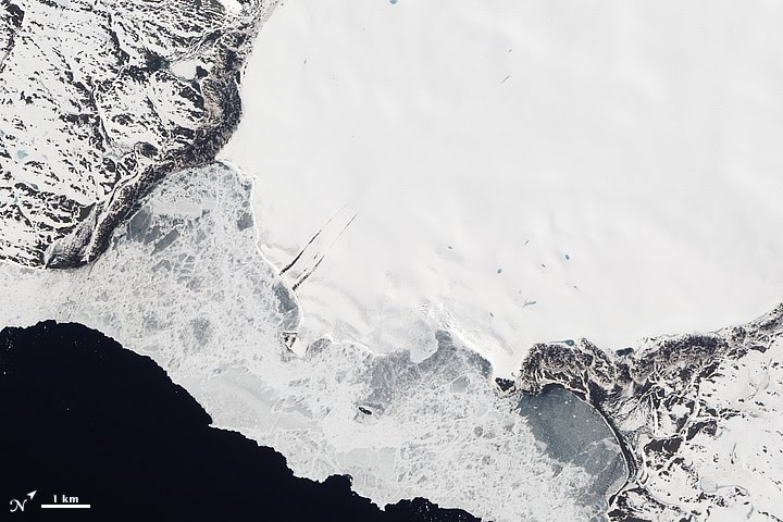 Roze Glacier, Novaya Zemlya