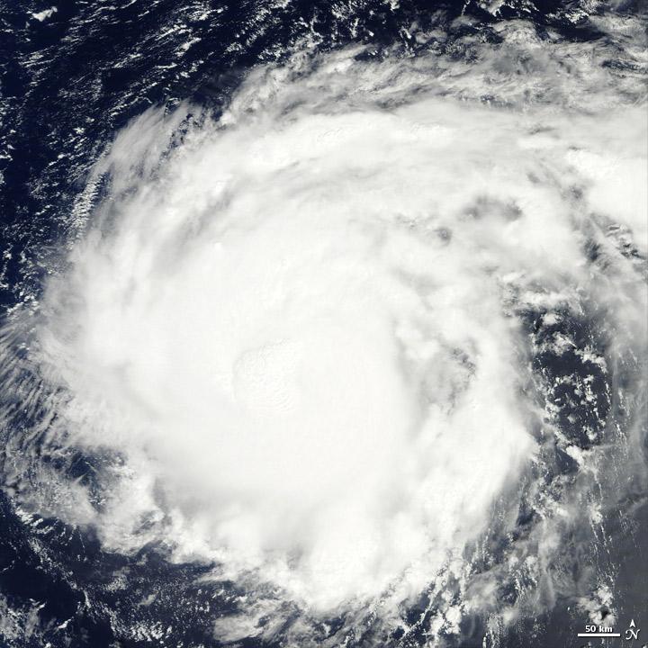 Typhoon Nalgae