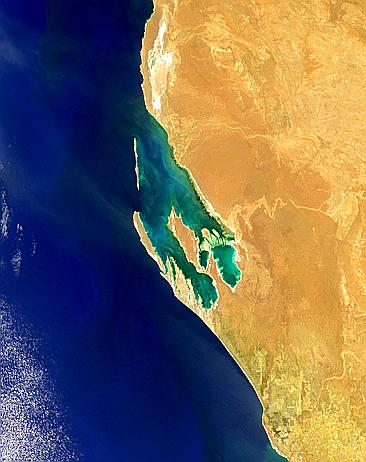 Shark Bay, Australia - related image preview
