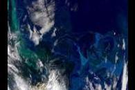 Psychedelic South Atlantic