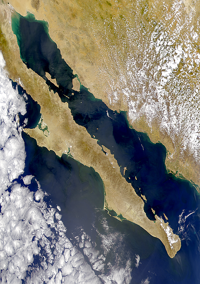 Sunglint on Gulf of California - related image preview