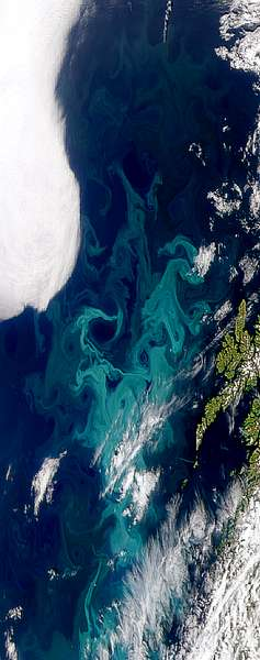 Turbulent Norwegian Sea Bloom - related image preview