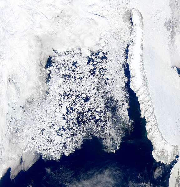 Barents Sea Ice - related image preview