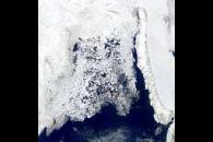Barents Sea Ice