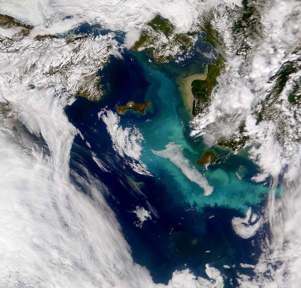 Bering Sea Bloom - related image preview