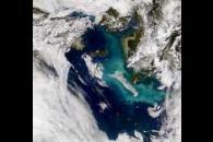Bering Sea Bloom