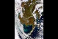Alaska and Bering Sea Bloom
