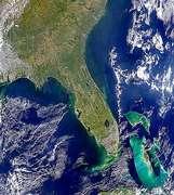 Florida - selected image