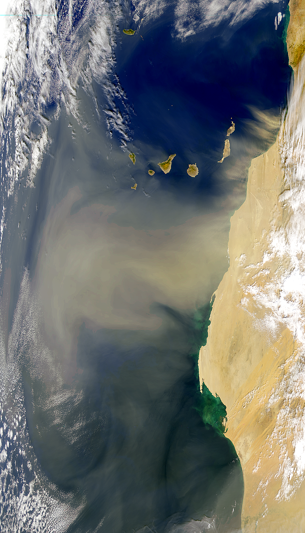 Northwest African Dust Plume - related image preview