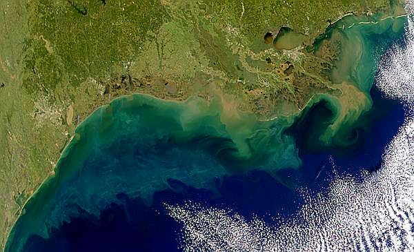 Colorful Gulf Coast - related image preview