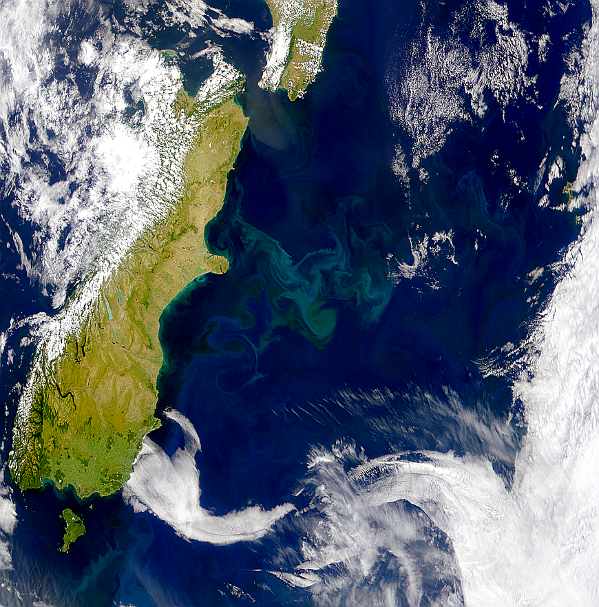 Blooms Off Coast of New Zealand - related image preview