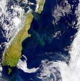 Blooms Off Coast of New Zealand - selected image
