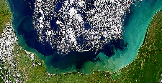 River Plumes in Bay of Campeche - related image preview