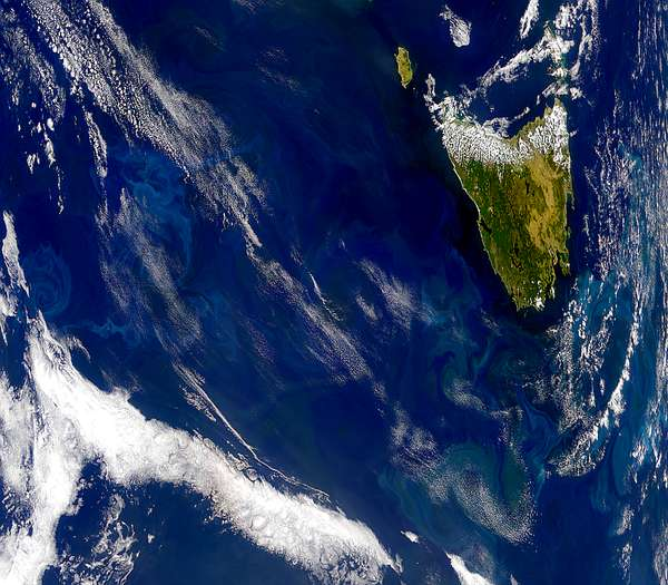 Swirling Blooms Around Tasmania - related image preview
