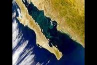 Gulf of California; Sea of Cortez