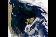 Blooms Around the Falkland Islands