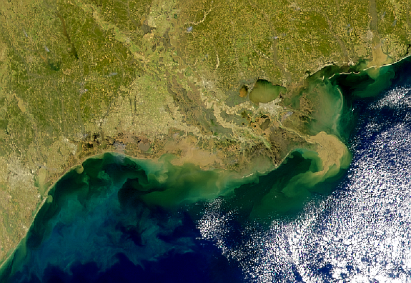 Mississippi Delta Plume - related image preview