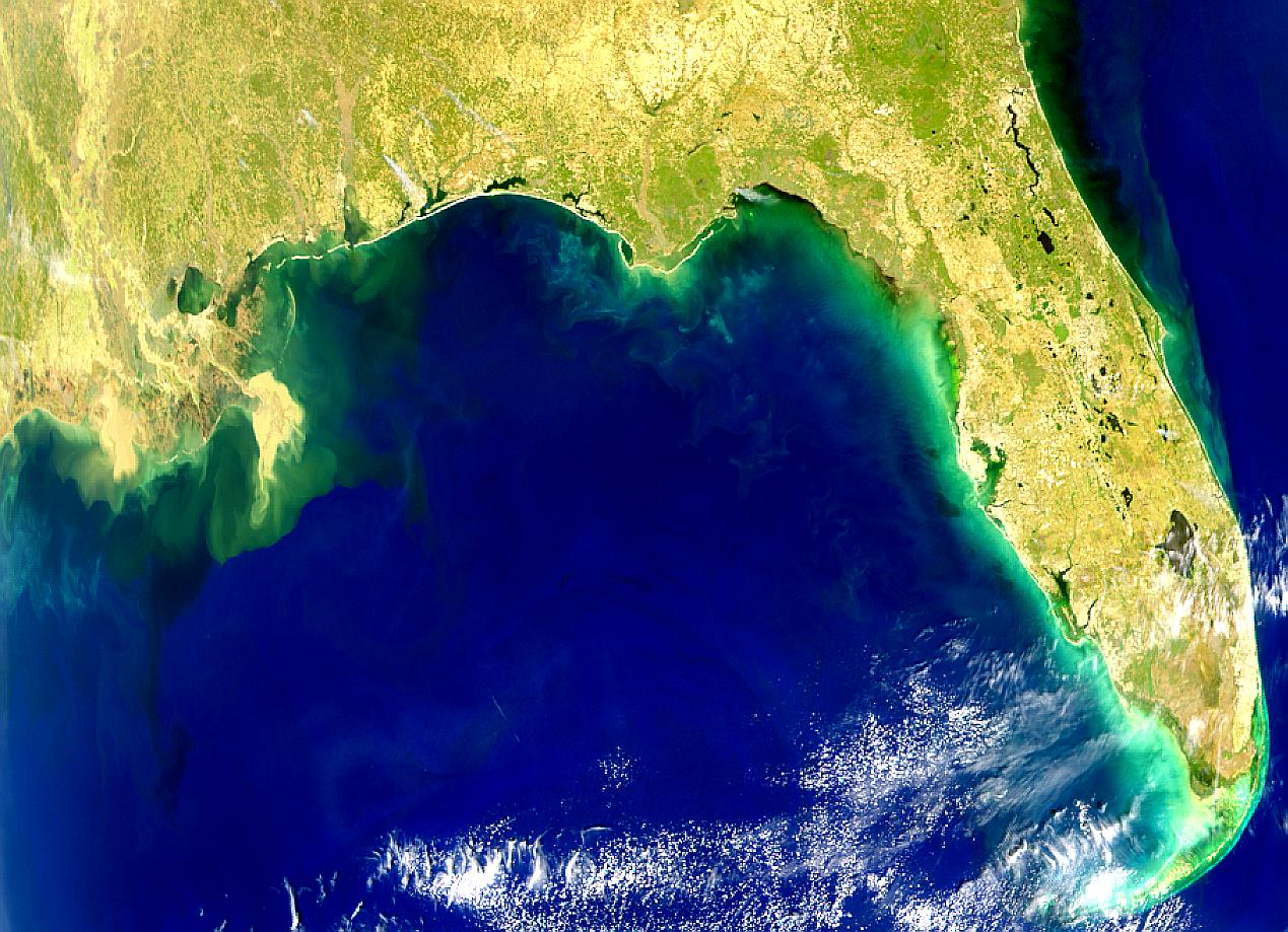 Red Tide Along Florida Panhandle - related image preview