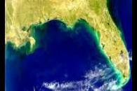 Red Tide Along Florida Panhandle