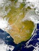 South Africa Phytoplankton - selected image