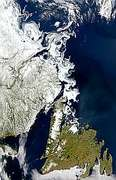 Labrador Sea Ice - selected image