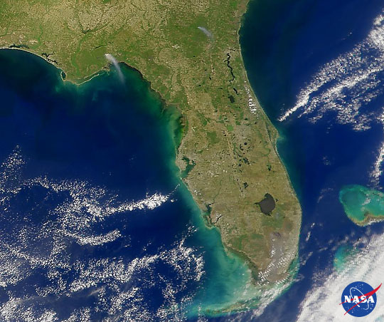 Florida Fires, April 1999 - related image preview