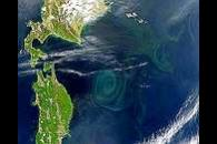 Large Gyre East of Japan