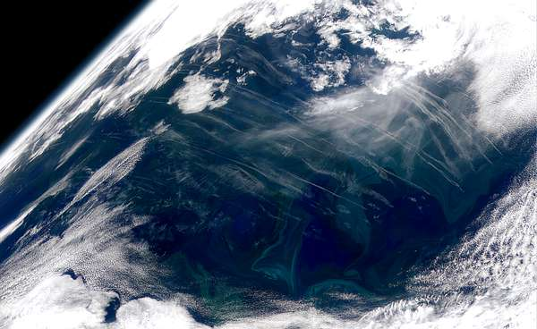 North Atlantic Bloom - related image preview