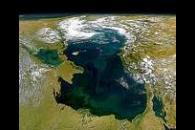 Eutrophic Black Sea
