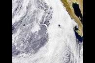 Cloud Patterns Off Baja