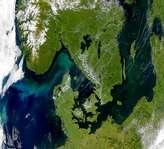 Blooms in the Skagerrak - selected image