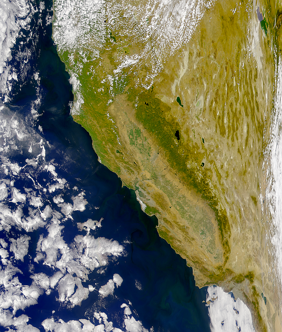 Water Clarity in California - related image preview
