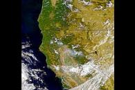 Smoke Plumes in Northern California