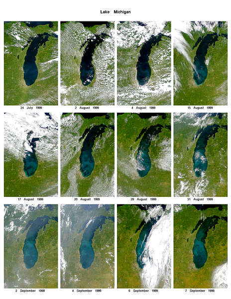 Lake Michigan in Bloom - related image preview